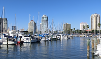 800px-Downtown_St._Petersburg_Florida_fr