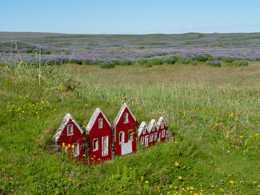 Miniature red houses with turf roofs is a field with heather and blue skies. Elves and trolls in Iceland.