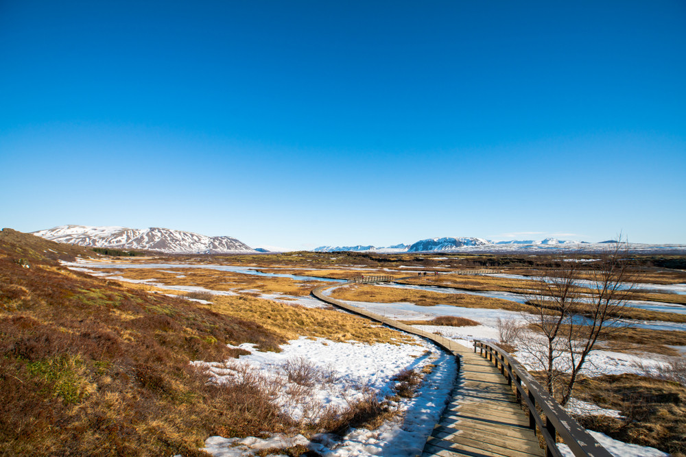 Wooden walkway leads through a snow and autumn colour landscape under blue skies. Iceland's Golden Circle.
