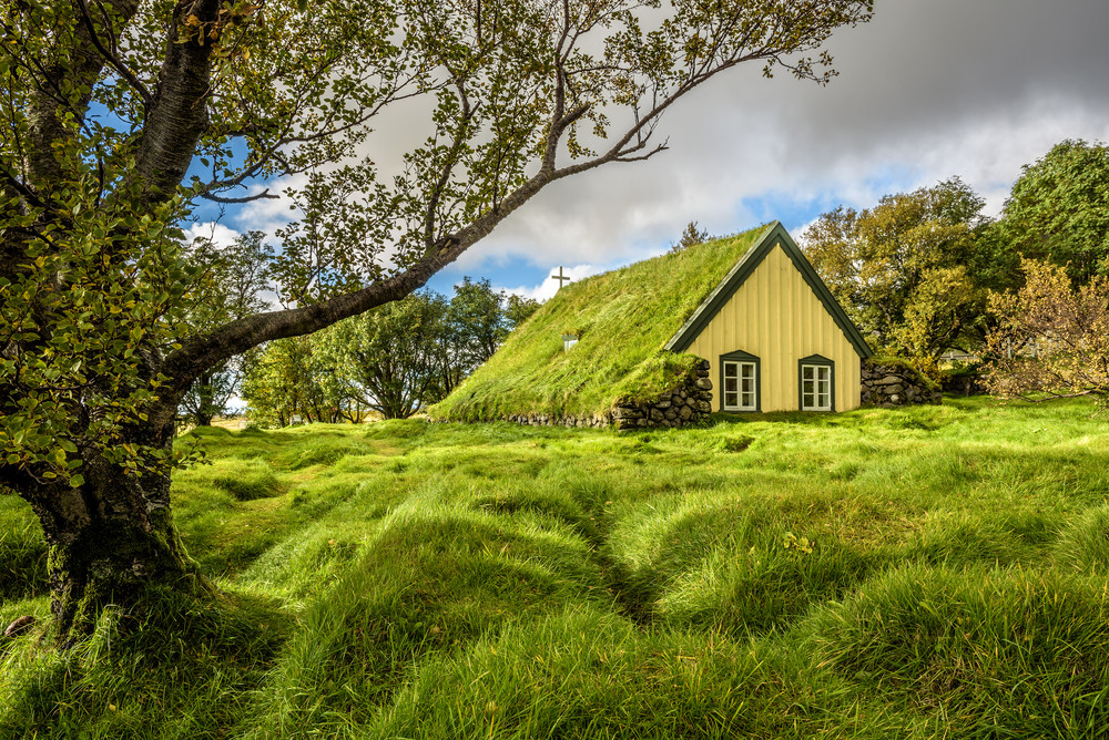One of the many turf roofed churches in Iceland. Green roofed and lush green field and trees.