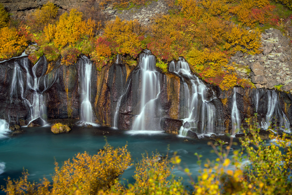 Fall colours over a line of waterfalls plunging into deep green waters. Iceland in October.