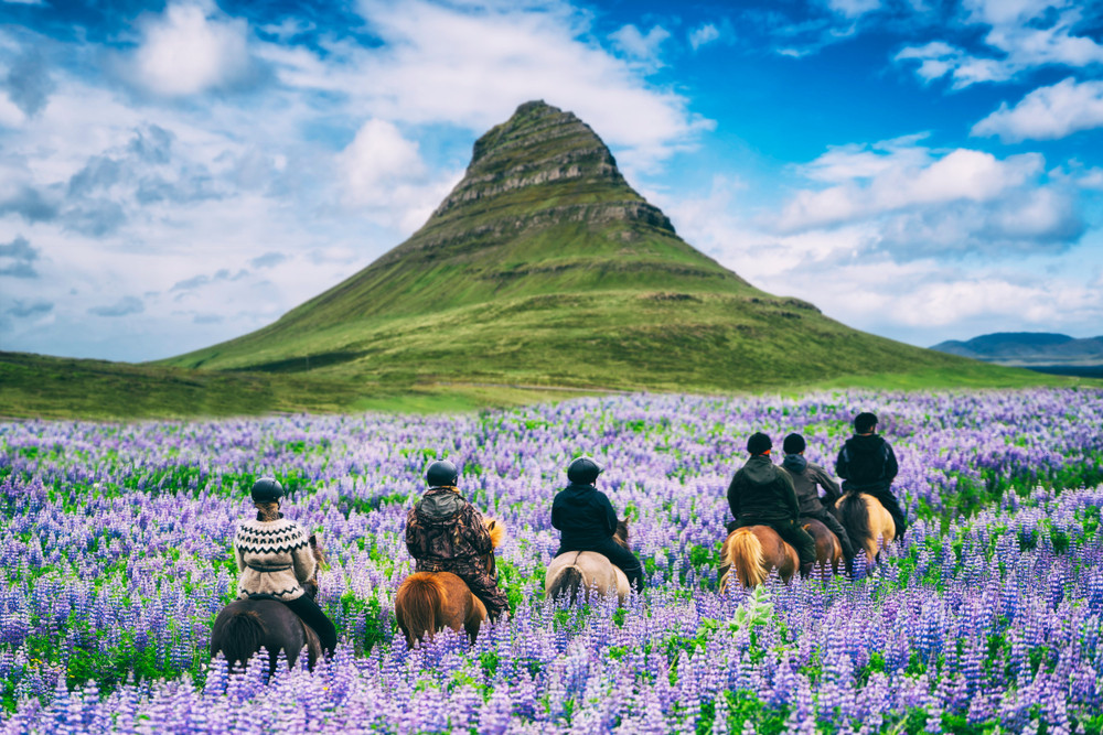 Group of tourist riding Icelandic horses - Travelling with Kids in Iceland.