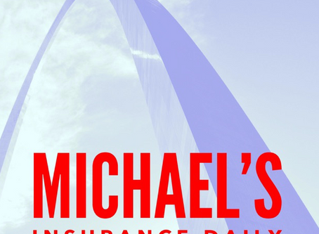 """Shari Belitz is Back on """"Michael's Insurance Daily"""" Podcast to Discuss Virtual Jury Trials"""