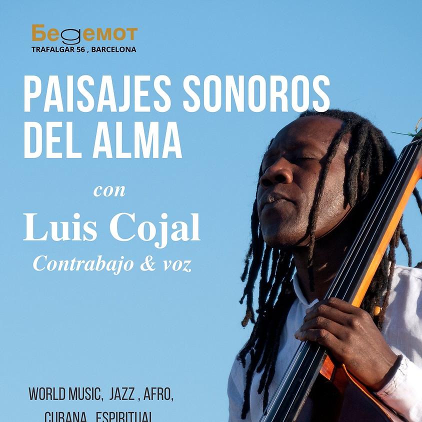 Luis Cojal