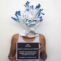 CORAL ANTHOZOA. Artists: Olivia Ferrand & Cindy Larrat, France (2020)
