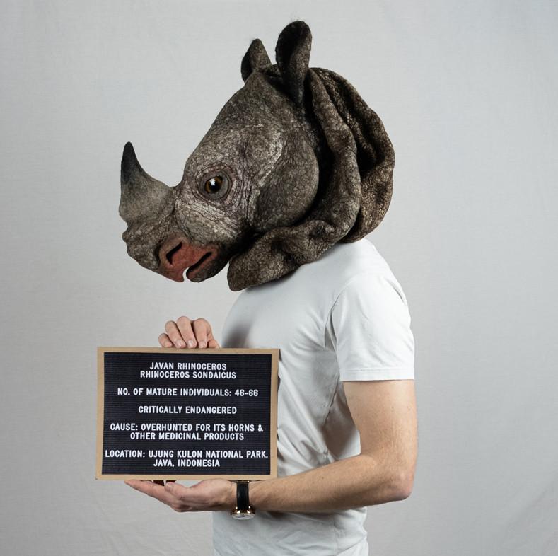 Javan rhino by Gladys Paulus