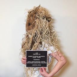LION. Artist: Christobel Macdonald, Canada (2020)