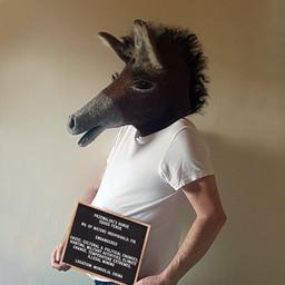 PRZEWALSKI'S HORSE. Artist:  Bärbel Helfrich, Germany (2021)
