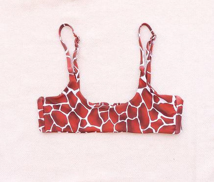 Minerva - Giraffa