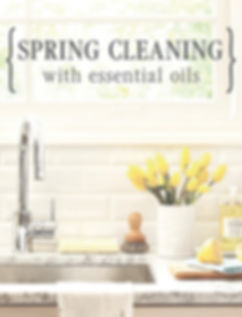 spring clean 2019 wix.jpg