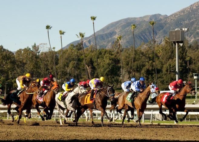 Santa Anita Park Suspends Races Following String Of Horse Deaths