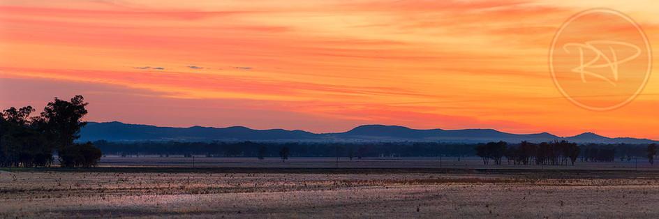Riverina Sunrise