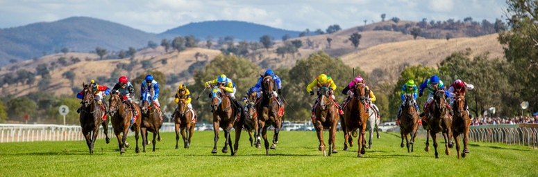 Albury Gold Cup