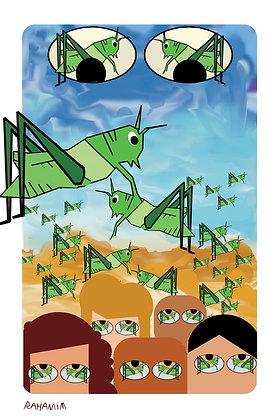 grasshoppers - חגבים