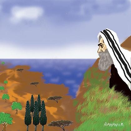 Avraham - אברהם