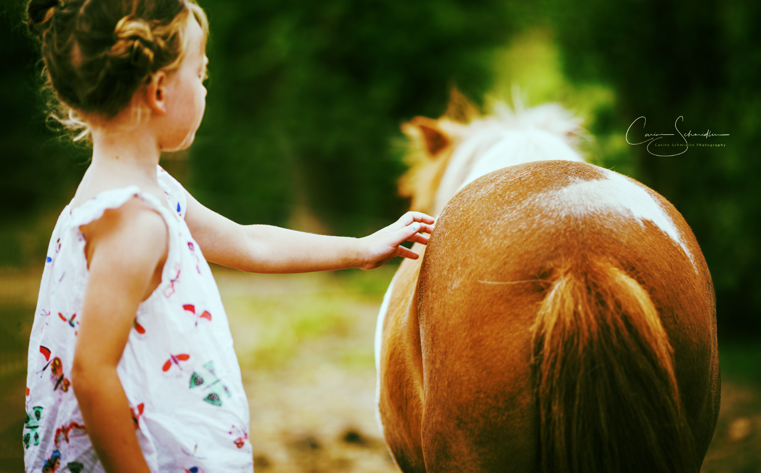 equi-coaching enfant chevalessence