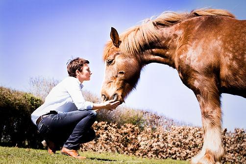 Le cheval pour guide,chevalessence coaching facilité par le cheval.