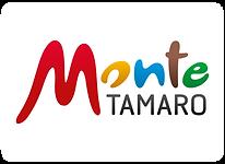 MonteTamaro.png