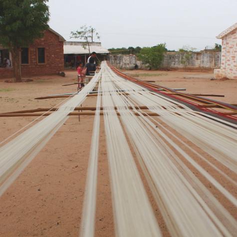Kala Cotton Production, Kutch