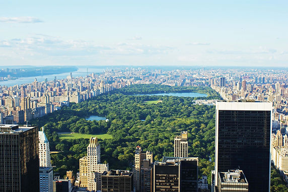 central-park-from-above2.jpg