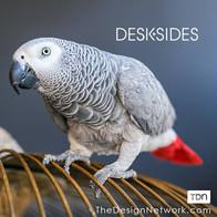 Preen - DeskSide, Design Network.jpg