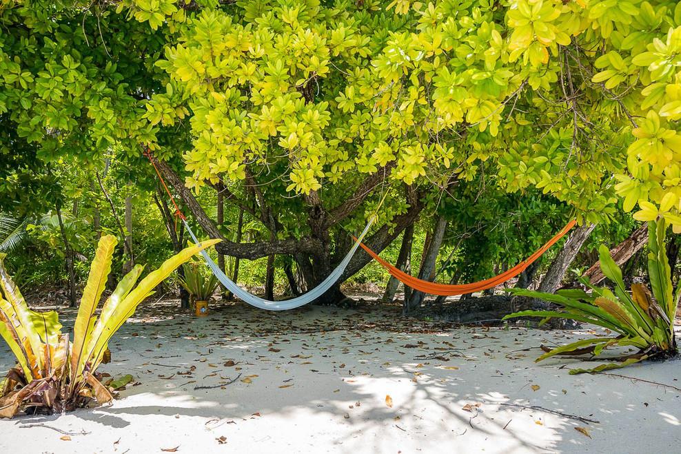 preeninc - beran island hammock
