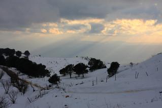 Winter daytrips