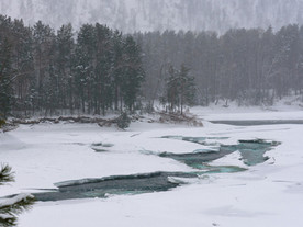 Зимой на Алтае. Снегопад