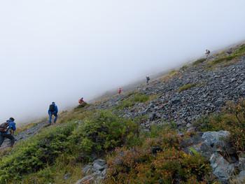 Летнее путешествие на Алтай. В тумане