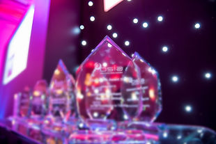 20170712-BSIA-Awards-2017-0028_edited.jp