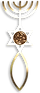 First Century Messianic Seal found in Jerusalem, The Menorah, The Star of Davis, The Fish