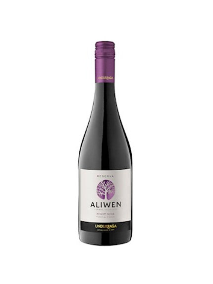 Vinho Tinto Aliwen