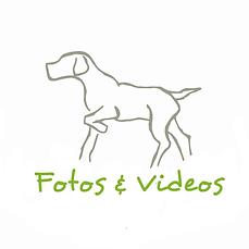 Fotos&Videos HSW.png