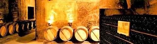 Le Clos des Menuts à Saint-Emilion offre des vins de garde à la fois fins et corsés, à la sève riche et délicate et d'une belle longueur en bouche. Un assemblage harmonieux entre le Merlot, Cabernet Sauvignon et Cabernet franc