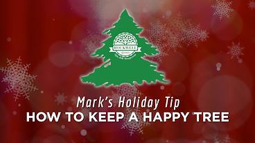 Marks Vlog-Tip 3.png