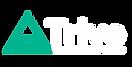 北海道ニセコをベースにバックカントリーガイドツアーをおこなっているTrivemountainGuideaHokkaidoのロゴ