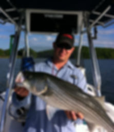 striped bass, fishing guide, igloo cooler, striper guide