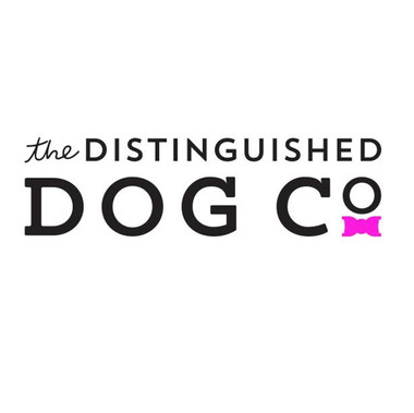 DISTINGUISHED DOG