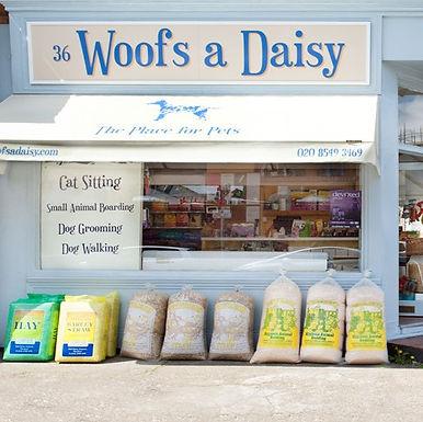 Woofs a Daisy