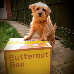 Butternut Box2.jpg