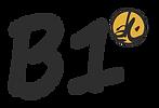 Icona BASE B1.png