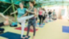 Alpha Yoga Greece Corfu Island yoga teacher training in