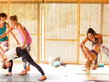 300 hour Yoga Teacher Training and 5 reasons why every yoga teacher should take one