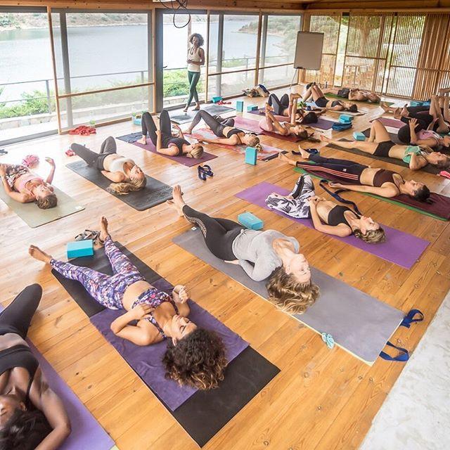 Styles of Yoga | Alpha Yoga blog post