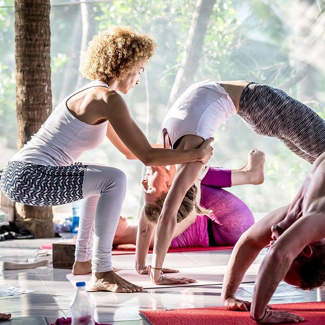 Offering hands-on adjustments in an Ashtanga Yoga class
