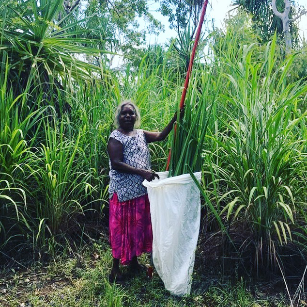 Dorothy-with-Pandanus-.png