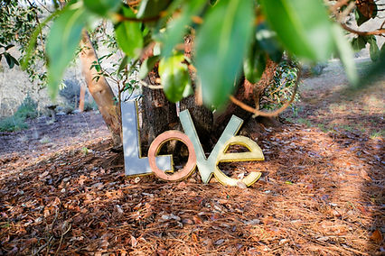 Love with Madrone.jpg