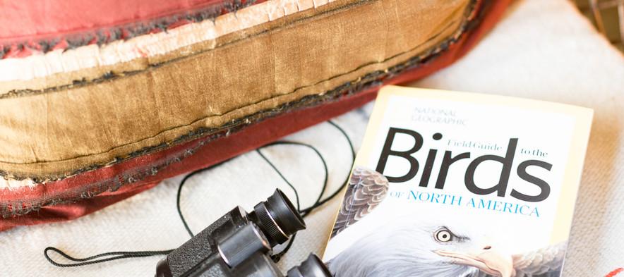 Birds and Binocs...