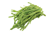 chenopodioideae-seed-bean-common-stock-p