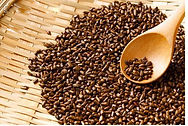 fried_semen_cassiae_seed_cassia_tora_lin